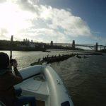 Cormorants Bridge March15